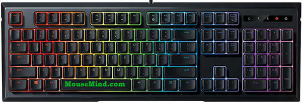 Razer Ornata Chroma Keyboard